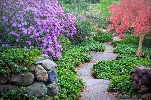 Comment concevoir une belle allée de jardin