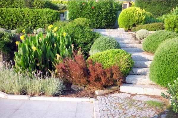 Entretien allée de jardin