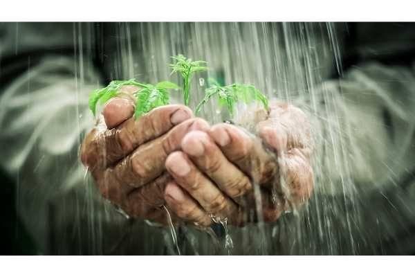 Les avantages d'un récupérateur d'eau de pluie